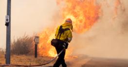 Firefighter battling with brushfires